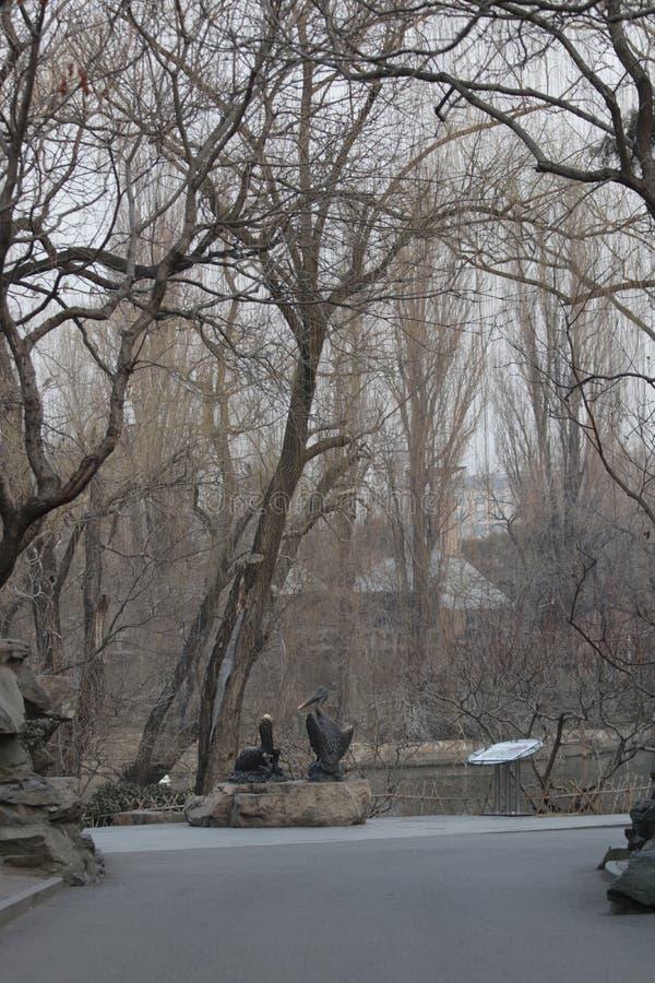 Entr?e de zoo de P?kin, Chine images libres de droits