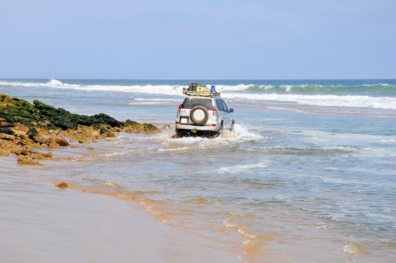 Entraînement aventureux le long de la plage image libre de droits