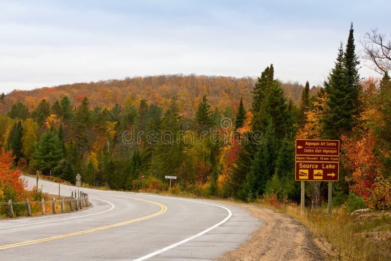 Route de parc d'algonquin dans l'automne photographie stock