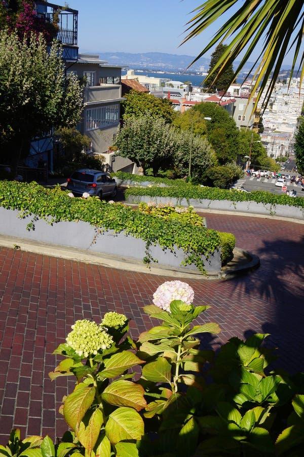 Entraîner une réduction la rue la plus tordue à San Francisco photos libres de droits