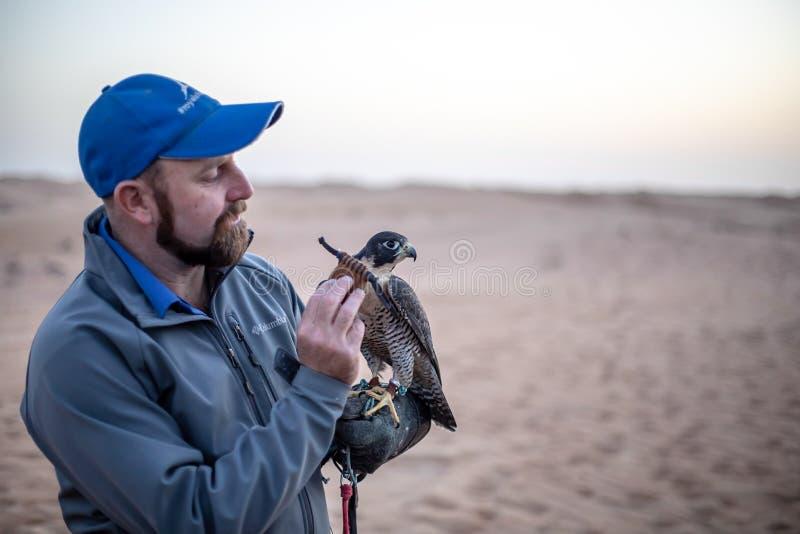 Entraîneur de faucon photo stock