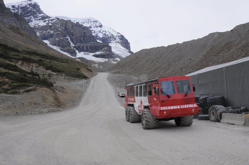 Entraîneurs de Snow d'explorateur de glace sur le glacier d'Athabasca photos libres de droits