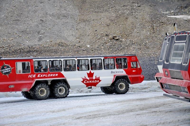Entraîneurs de Snow d'explorateur de glace sur le glacier d'Athabasca photographie stock libre de droits