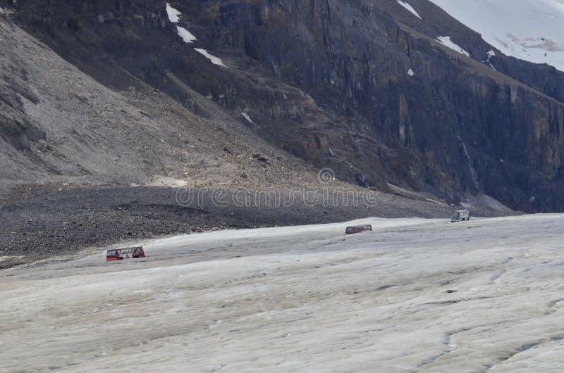 Entraîneurs de Snow d'explorateur de glace sur le glacier d'Athabasca image libre de droits