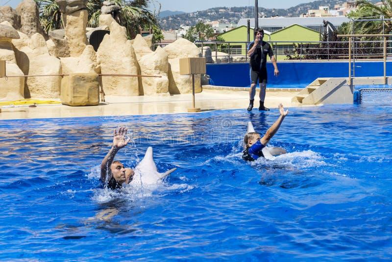 Entraîneurs nageant avec des dauphins dans une piscine photo libre de droits