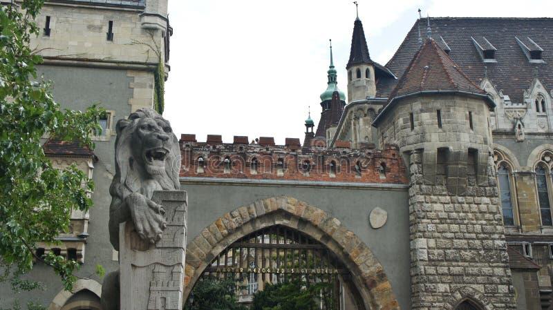 Entrada al castillo de Vajdahunyad, estatuas del león, arquitectura hermosa, Budapest, Hungría imágenes de archivo libres de regalías