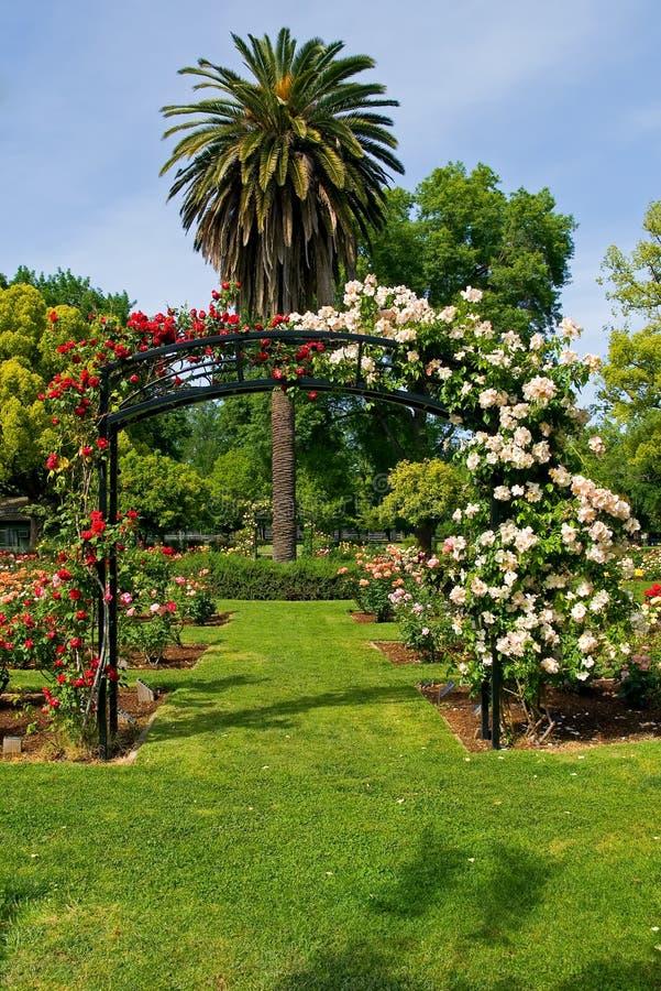 Entrada ao jardim de rosas fotografia de stock