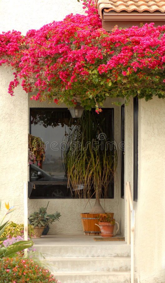 Entrada da HOME com as flores vermelhas que drapejam a imagem de stock royalty free