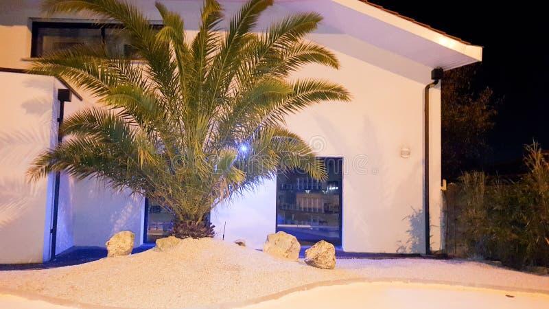 Entrada da mansão da casa da praia em um lugar tropical com palmeira imagens de stock
