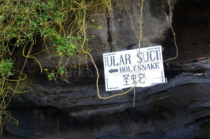 Entrada da serpente do azevinho no templo do lote de Tanah fotos de stock royalty free