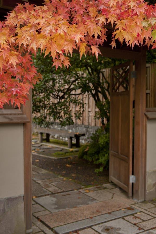 Entrada de la puerta de jardín con el arce imagenes de archivo