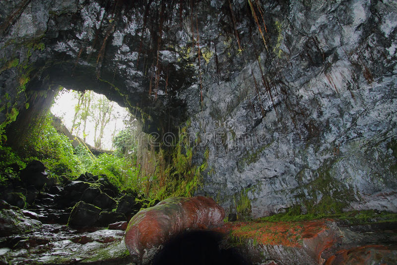 Entrada de una de dos cuevas de Kaumana en la isla grande fotos de archivo