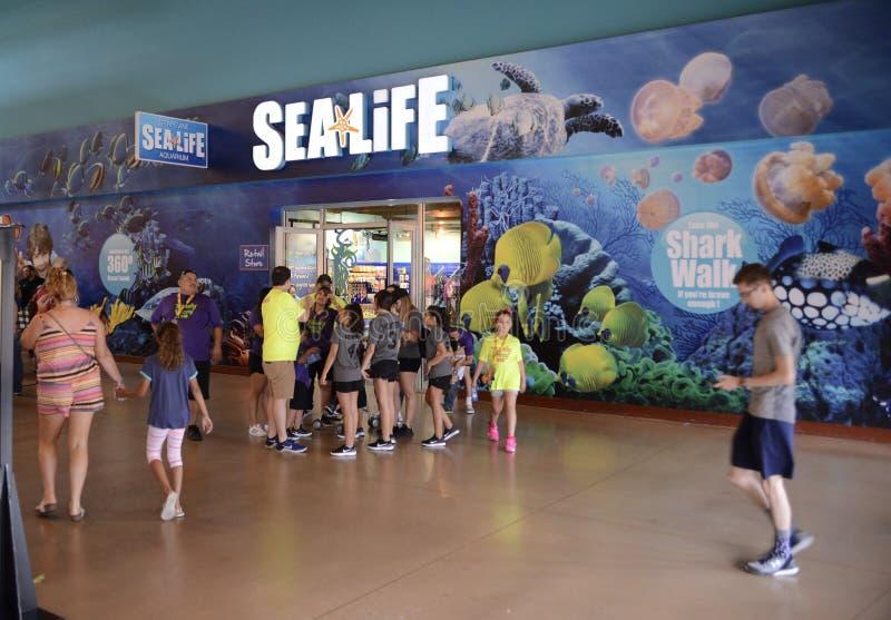 Entrada del acuario de la vida marina, vid Tejas fotografía de archivo