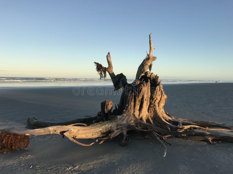 Entrada del ponce de la playa foto de archivo