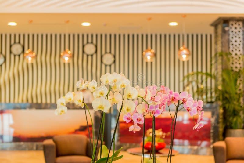 Entrada do hotel com projeto moderno foto de stock royalty free