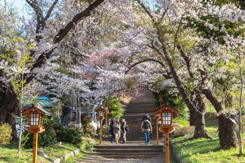 Entrada do parque de Arakurayama Sengen fotografia de stock