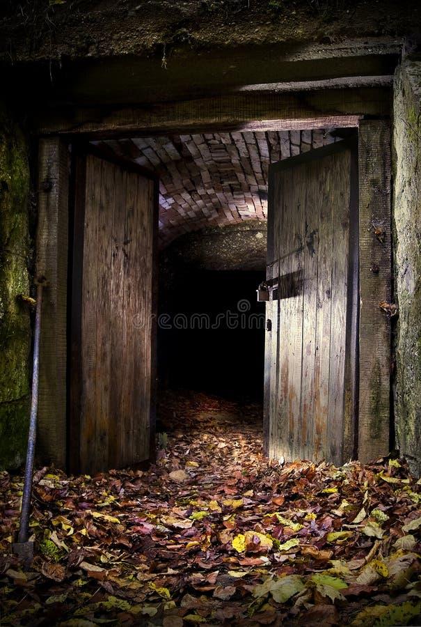 Entrada escura da caverna imagens de stock royalty free