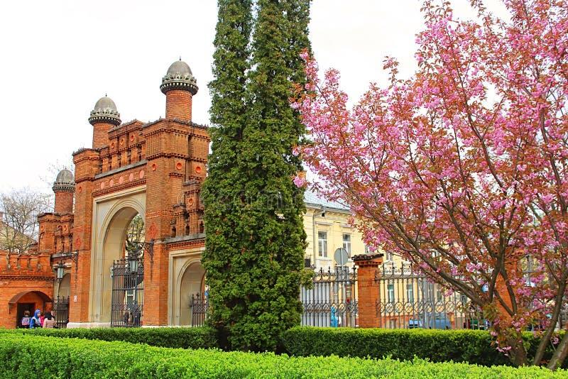 Entrada a la universidad de Chernivtsi la residencia anterior de los metropolitanos, Ucrania occidental fotografía de archivo