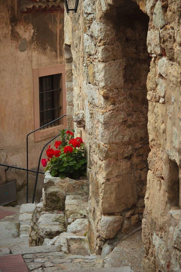 Entrada a uma casa velha fotografia de stock