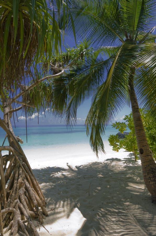 Entrada a una de las mejores playas de la blanco-arena imagen de archivo