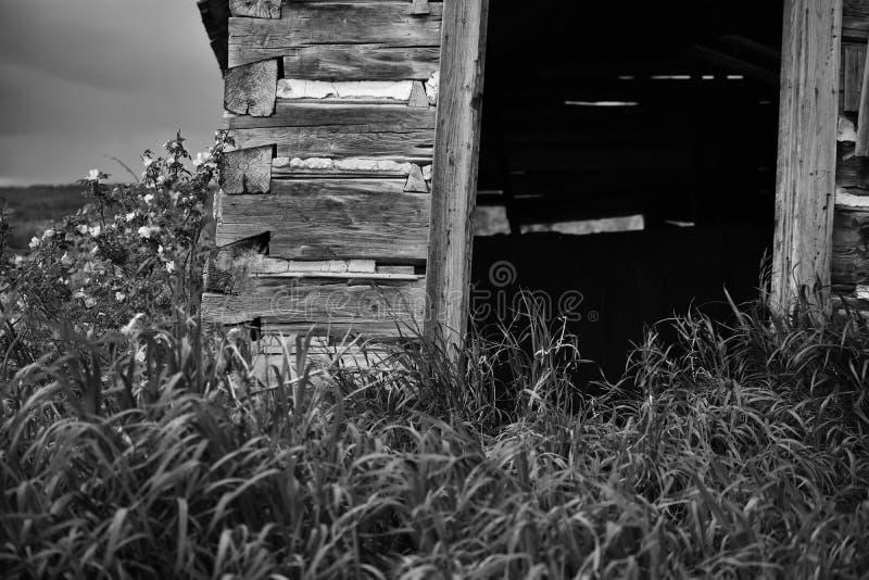Entrada velha escura e vazia foto de stock