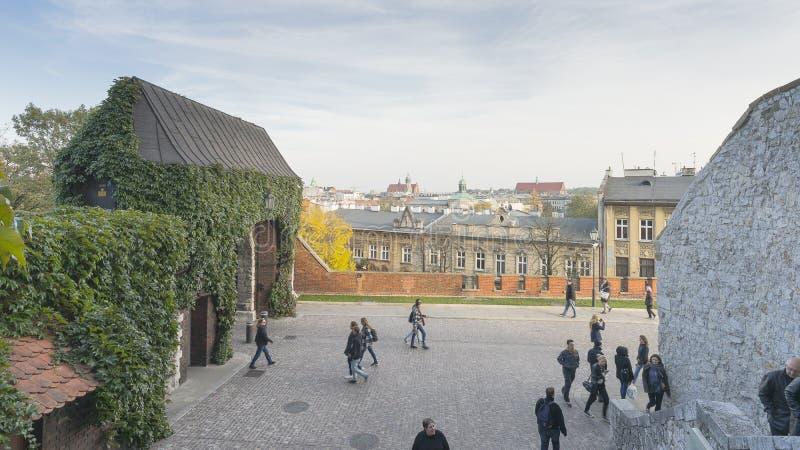 Entrada a Wawel fotografia de stock royalty free