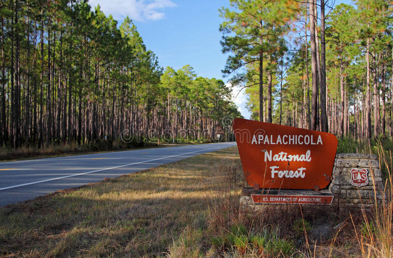 Entrance to the Apalachicola National Forest stock photo