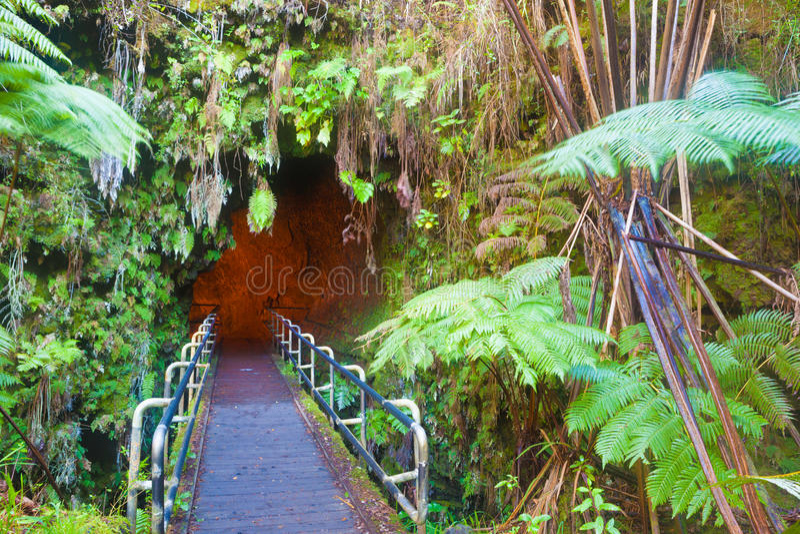 Entrance to the lava tube. Entrance to Thurston Lava Tube in Hawaii Volcanoes National Park royalty free stock photos
