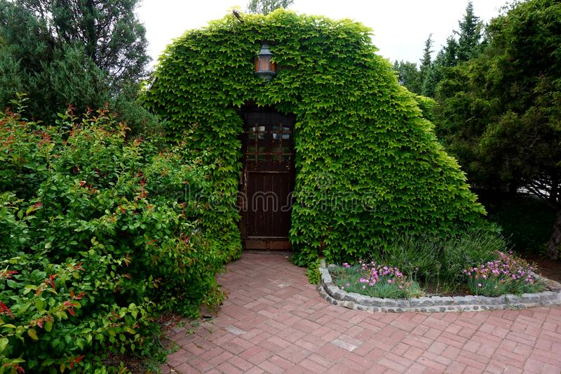 Entrance to a small house, lined with a creeper. It looks like a scene from a fairy tale.  royalty free stock photo