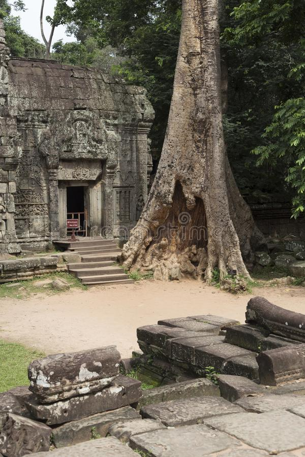 Entrance to the temple of ta prohm in angkor royalty free stock image
