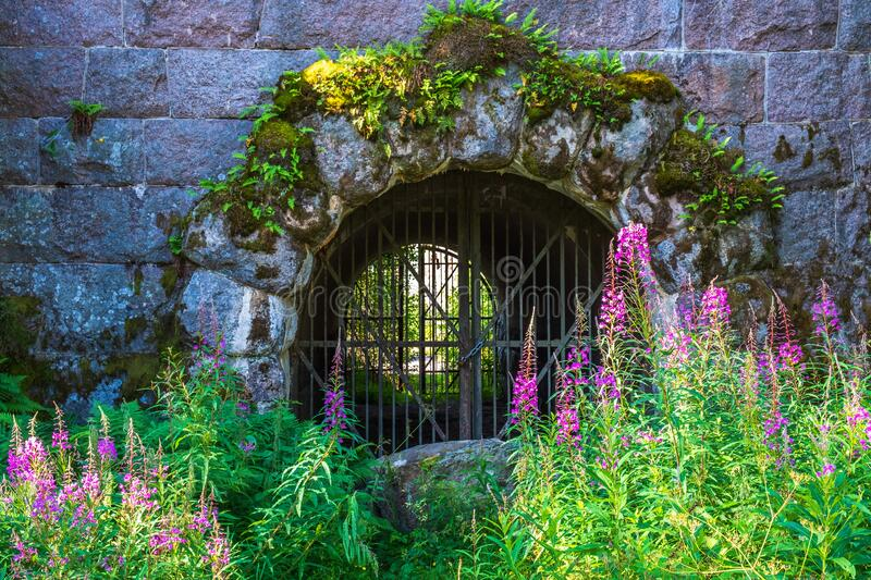 Entrance to Vaberget fortress in Sweden and with flowering fireweed stock images
