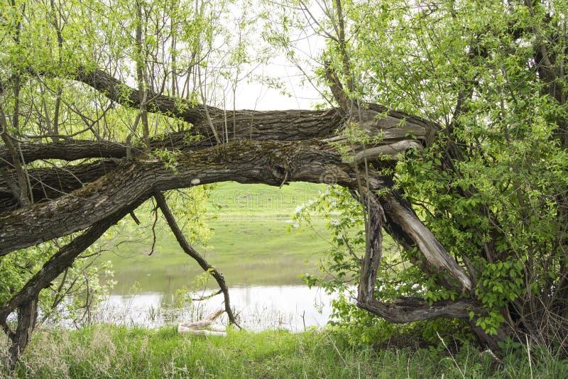 Entrata al fiume fotografie stock