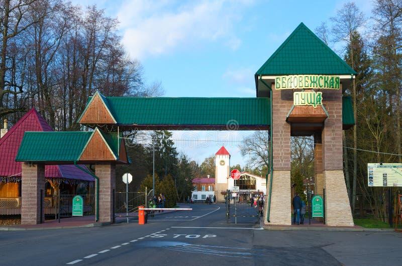 Entrata alla foresta di Bialowieza della riserva del parco nazionale, Bielorussia fotografia stock