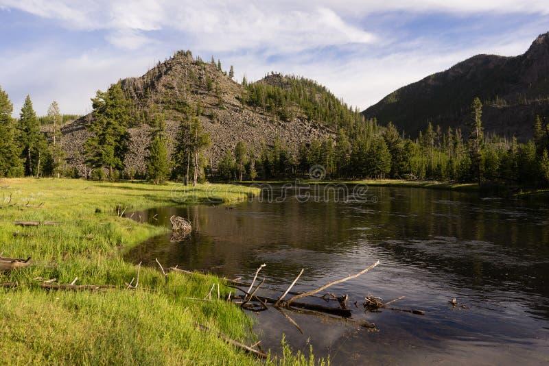 Entrata di costa Ovest di Madison River Flows Through Yellowstone immagini stock libere da diritti