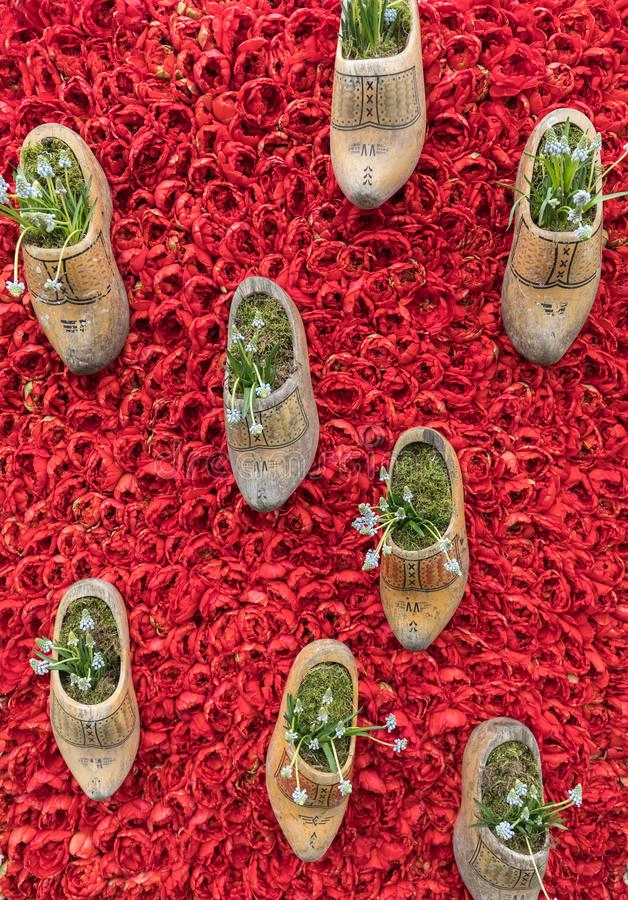 Entraves néerlandaises traditionnelles sur un fond des tulipes rouges images stock