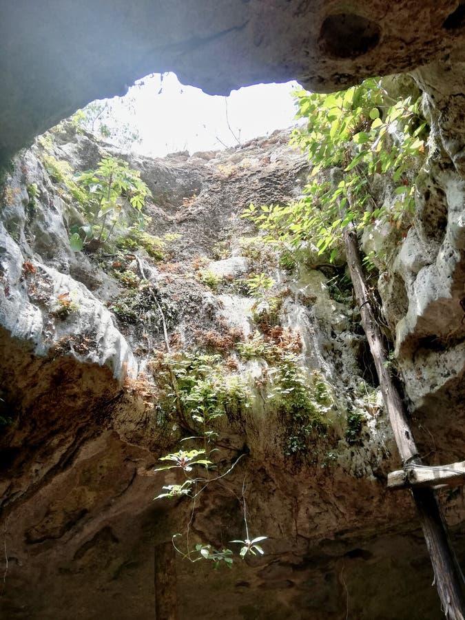 Entre debajo del r?o Yucat?n fotografía de archivo