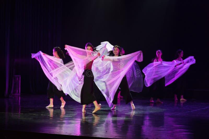 Entre l'idéal et la réalité 1--Âne de drame de danse obtenir l'eau photo stock