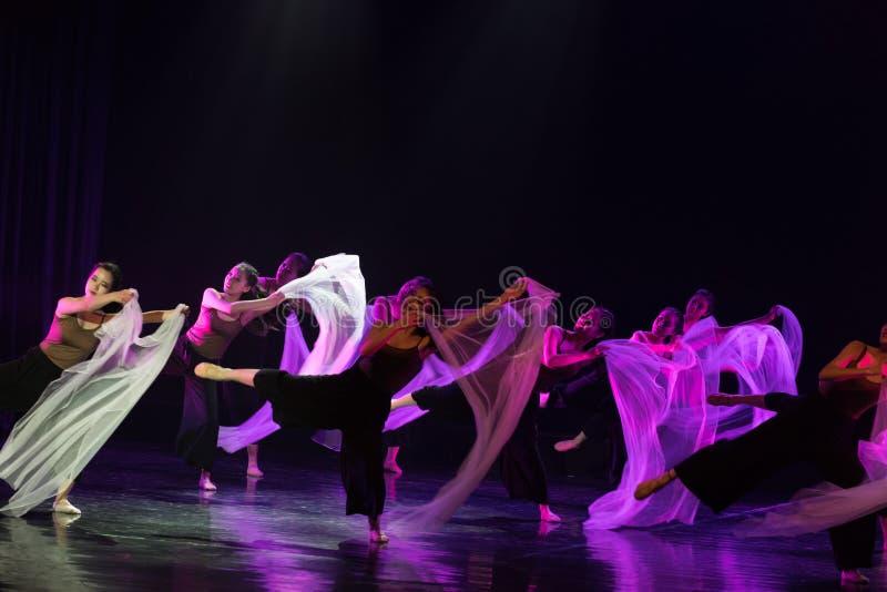 Entre l'idéal et la réalité 5--Âne de drame de danse obtenir l'eau photos stock