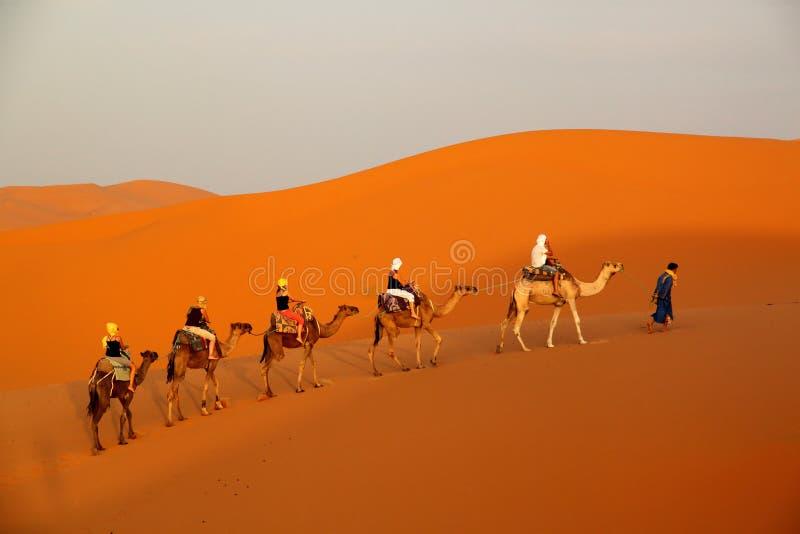 Entre las dunas de arena fotos de archivo