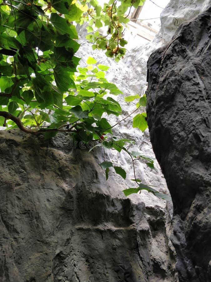 Entre les rochers photo stock