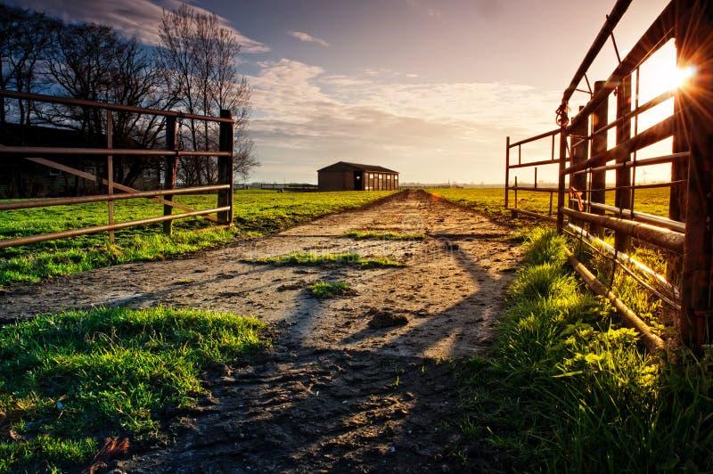 Entre na exploração agrícola imagens de stock royalty free