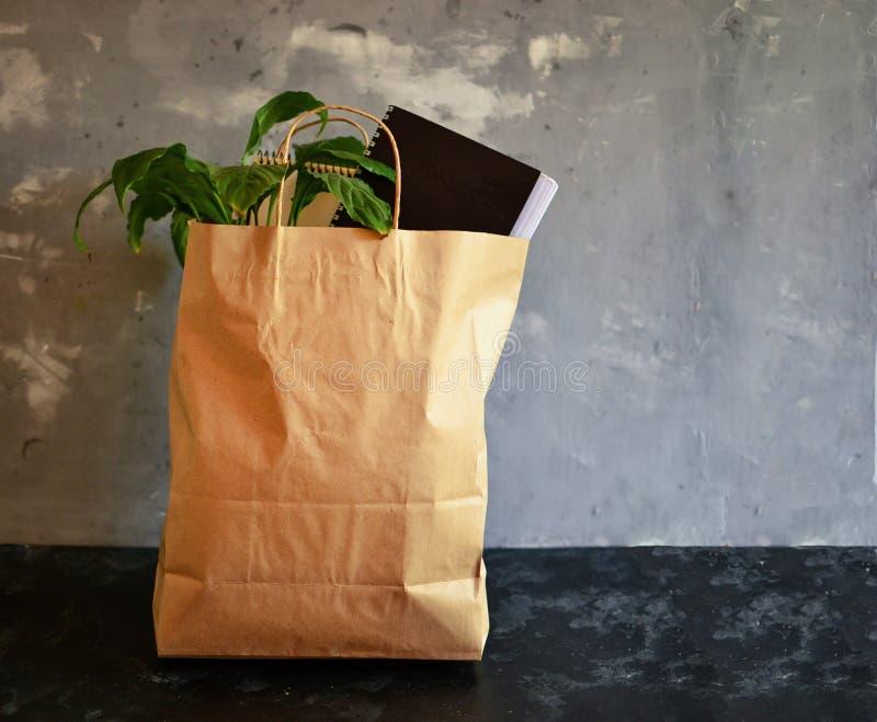 Entrega do escritório Entrega num saco de papel Planta e bloco de notas em saco de papel Entrega do correio Fundo cinza Gratuito foto de stock