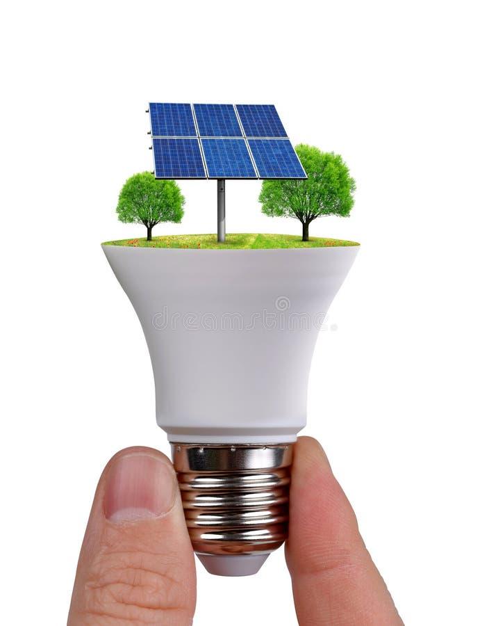 Entregue guardar o diodo emissor de luz do eco ampola com o painel solar isolado no fundo branco fotografia de stock royalty free