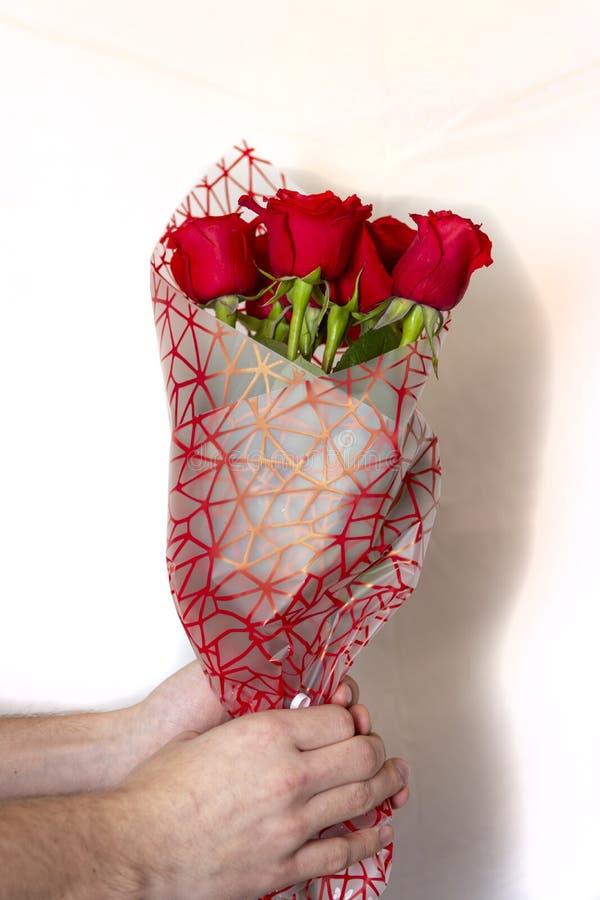 Entregue guardar o ramalhete de rosas vermelhas sobre o fundo branco fotografia de stock