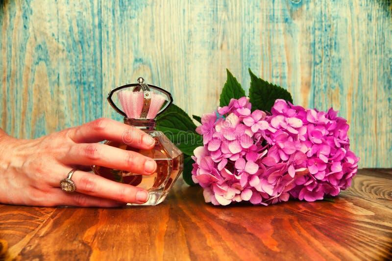 Entregue guardar um perfume e uma hortênsia fundo de madeira imagem de stock
