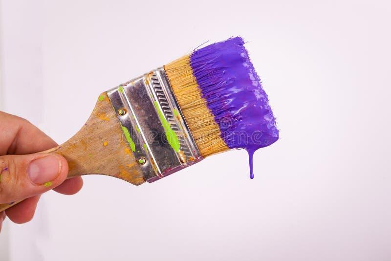 Entregue a holdig um gotejamento molhado roxo dobrado pincel da pintura da escova fotografia de stock royalty free