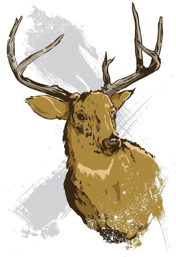 Entregue a ilustração desenhada do vetor de um cervo selvagem ilustração stock