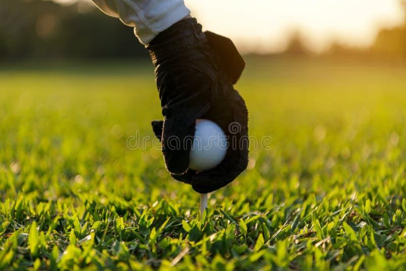 Entregue a mulher asi?tica que p?e a bola de golfe sobre o T com o clube no campo de golfe no dia ensolarado para o esporte saud? imagens de stock