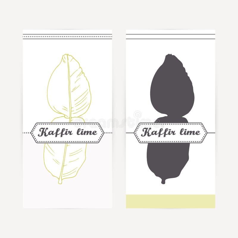 Entregue o cal tirado do kaffir no estilo do esboço e da silhueta Ervas picantes ilustração stock