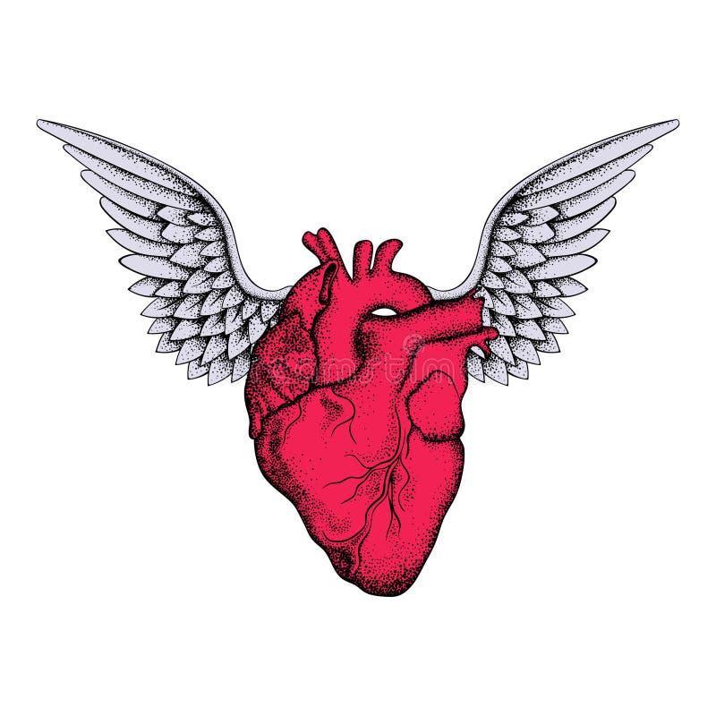 Entregue o coração vermelho elegante tirado com asas, esboço para o desi das tatuagens ilustração do vetor